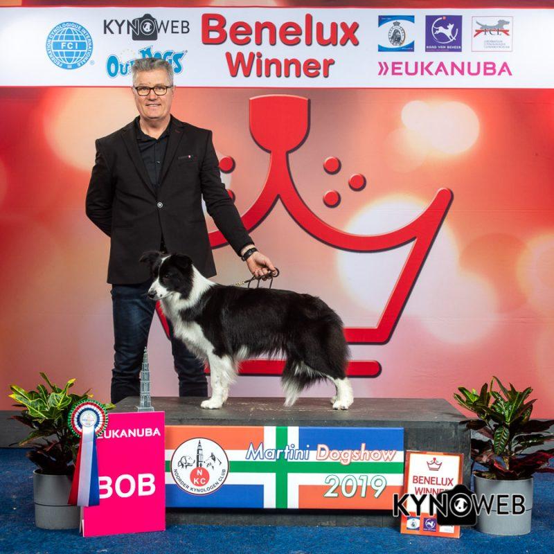324 Benelux Winster 2019