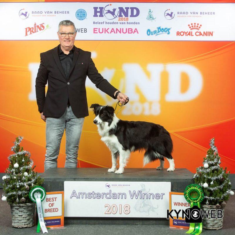 msterdams Winster 2018